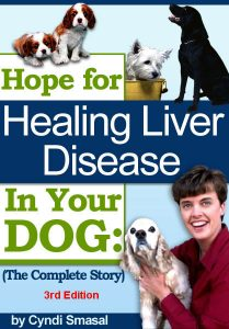 Helping Dogs with Liver Disease